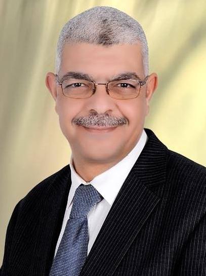 نائب رئيس جامعة المنوفيه للدراسات العليا والبحوث